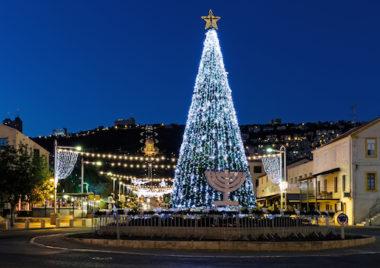 Christmas tree menorah hanukkah christmas december dilemma