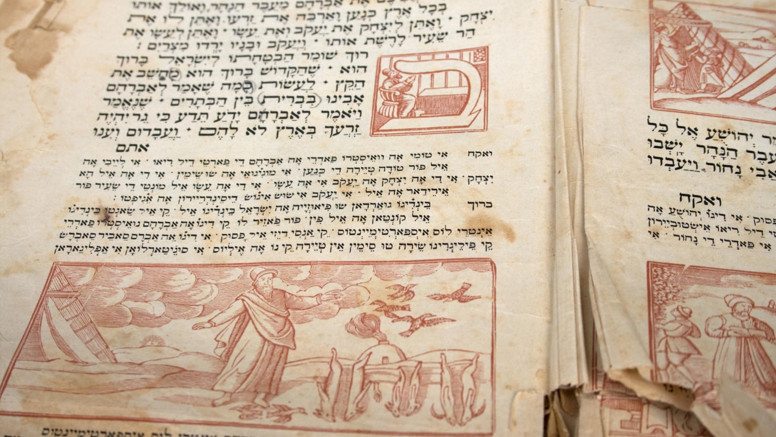 Supplementary seder readings my jewish learning buycottarizona Images