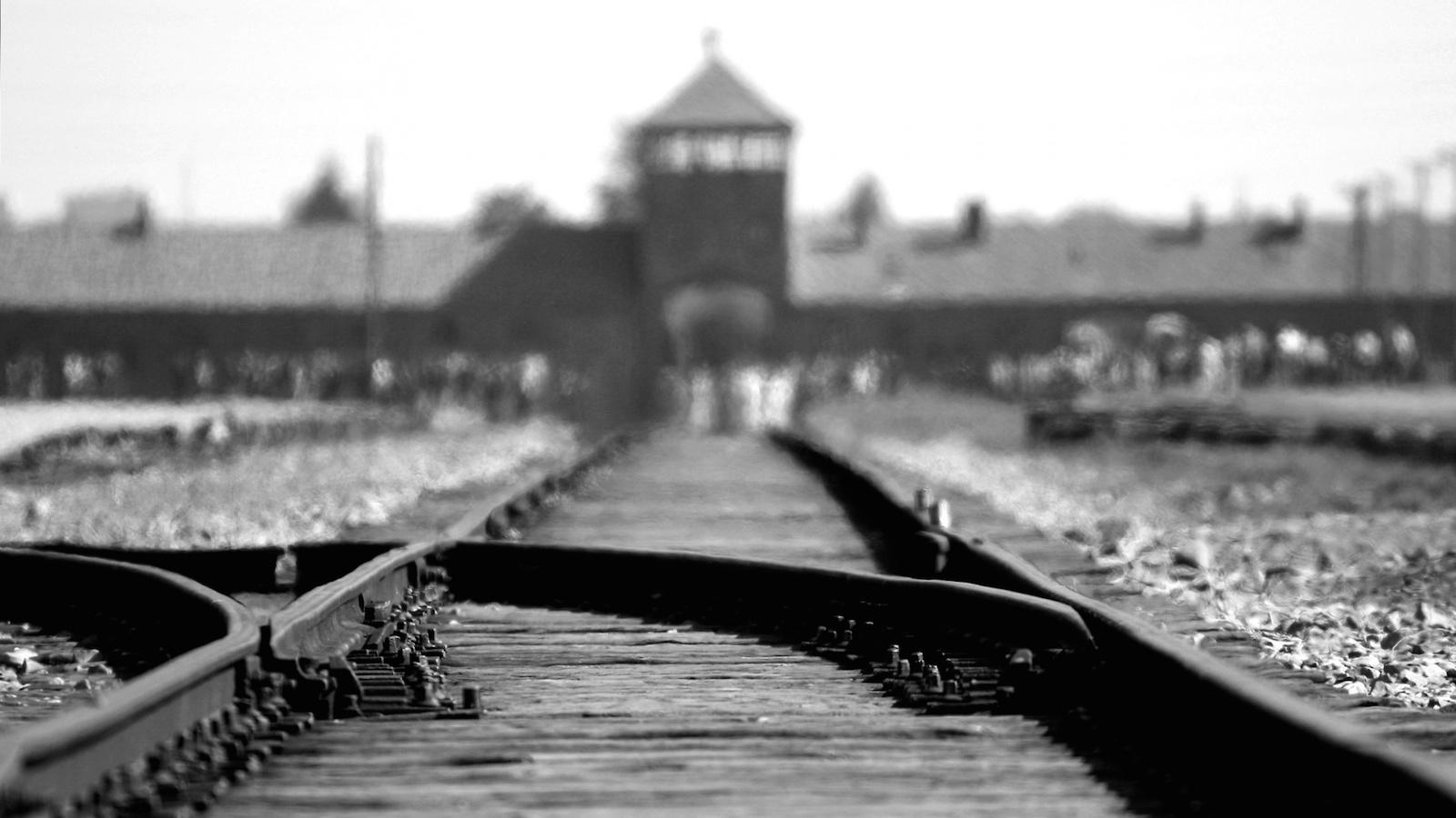 A day in Auschwitz II - Birkenau