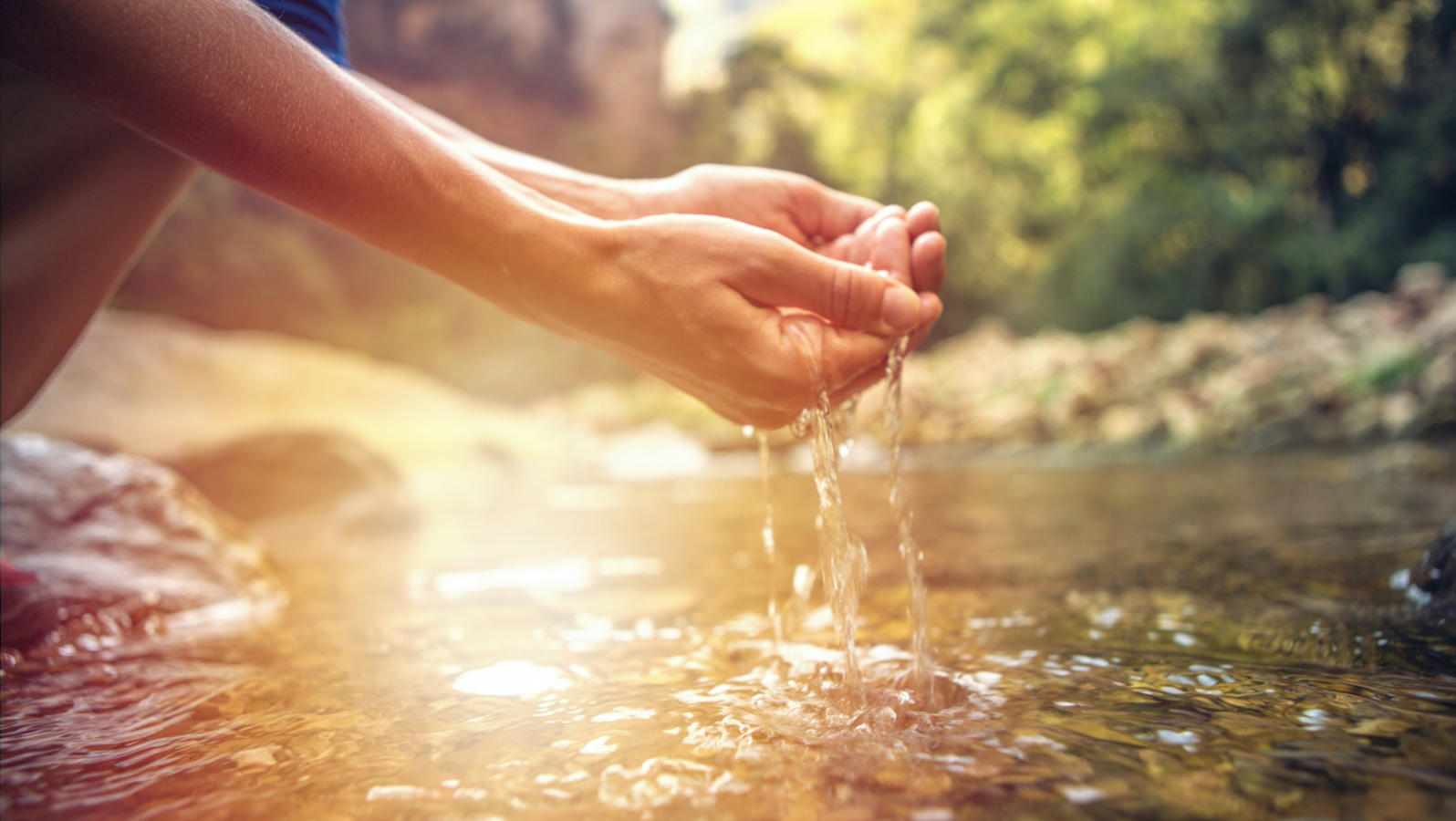 Where the Wood Meets Water | My Jewish Learning