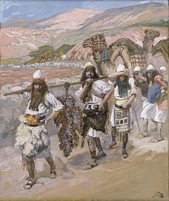 The Grapes of Canaan by James Tissot. Although the spies brought back a cluster of grapes so large that it took two men to carry it (Numbers 13:23), only two of the twelve brought back a good report of the land.