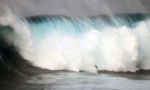 Jeff_Rowley_Big_Wave_Surfer_wipeout_Photo_Jaws_Peahi_by_Xvolution_Media_-_Flickr_-_Jeff_Rowley_Big_Wave_Surfer
