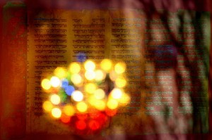 Torah Light by Mubina H