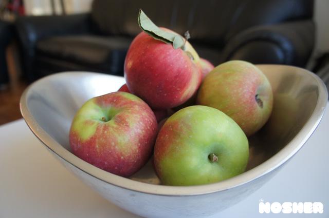 apple-noodle-kugel-cake-2
