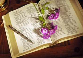 The Conventions of Biblical Poetry | My Jewish Learning