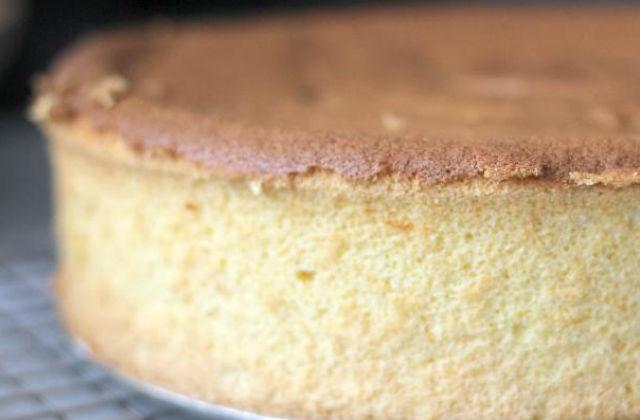 citrus sponge cake 1