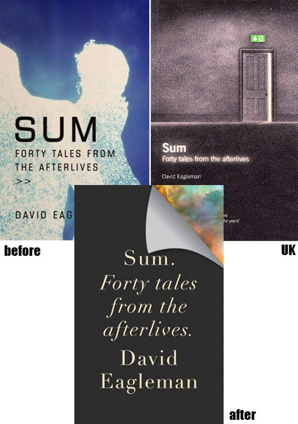 david_eagleman_covers.jpg