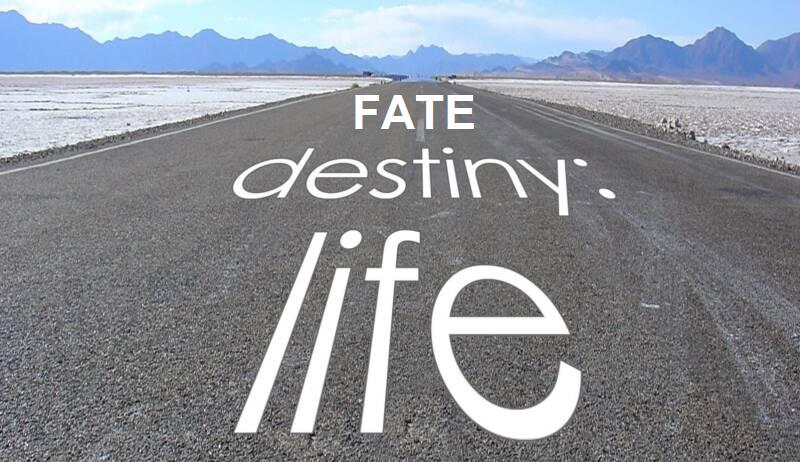 What paves our way - fate, or free will?