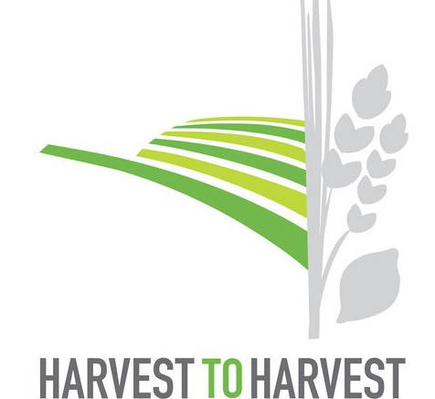 Birthright Israel Harvest to Harvest