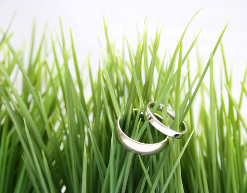 wedding rings in grass