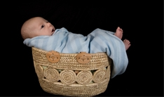 moses in a basket