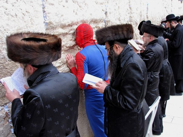 spider-man at the kotel with hasidim