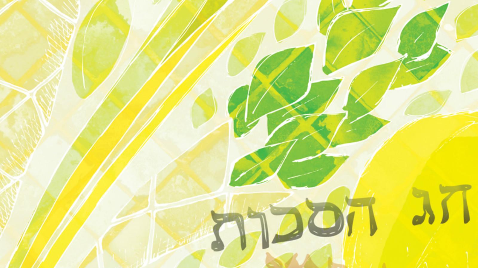 Sukkot 101   My Jewish Learning