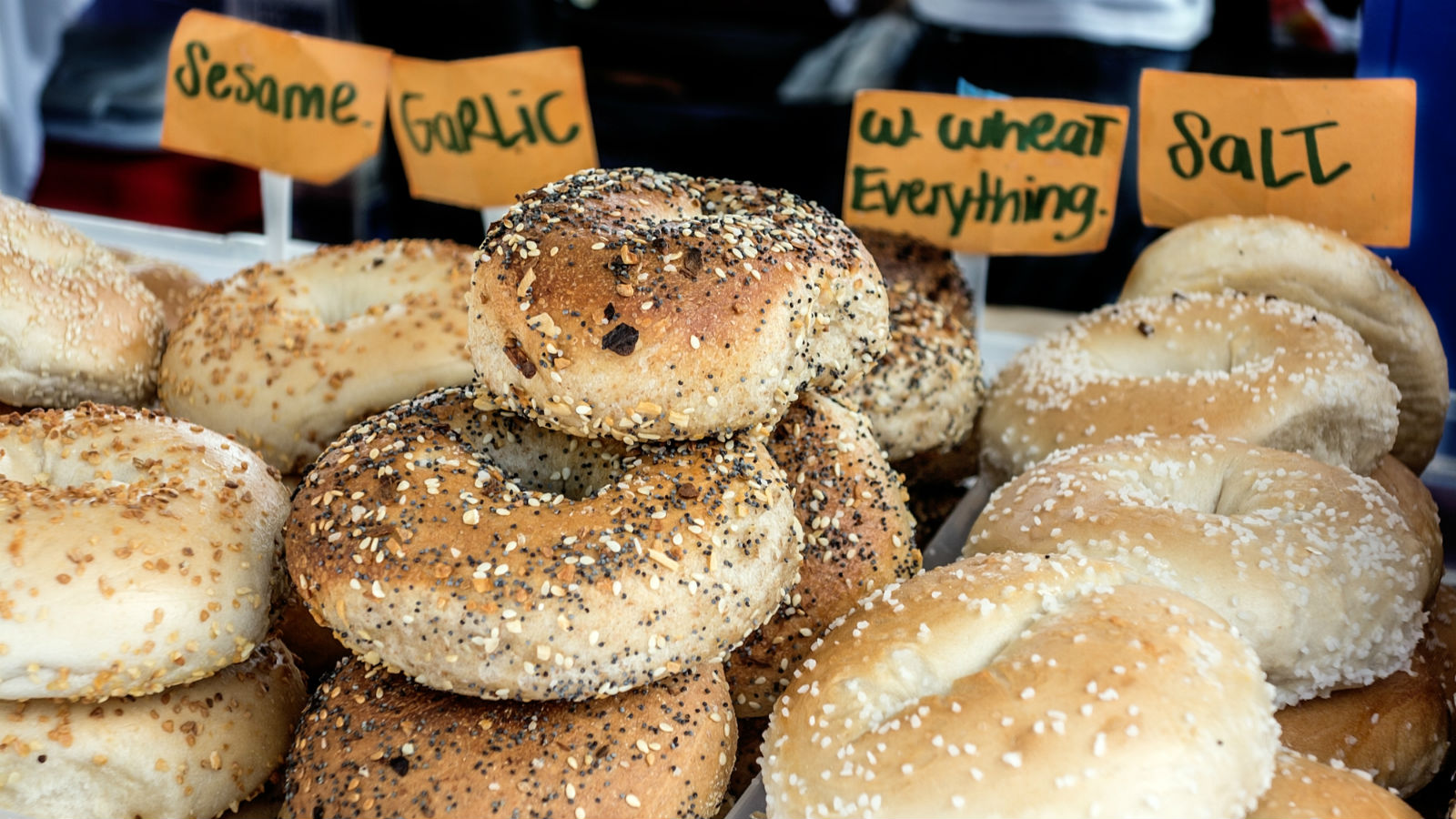 all the best bagel flavors ranked the nosher