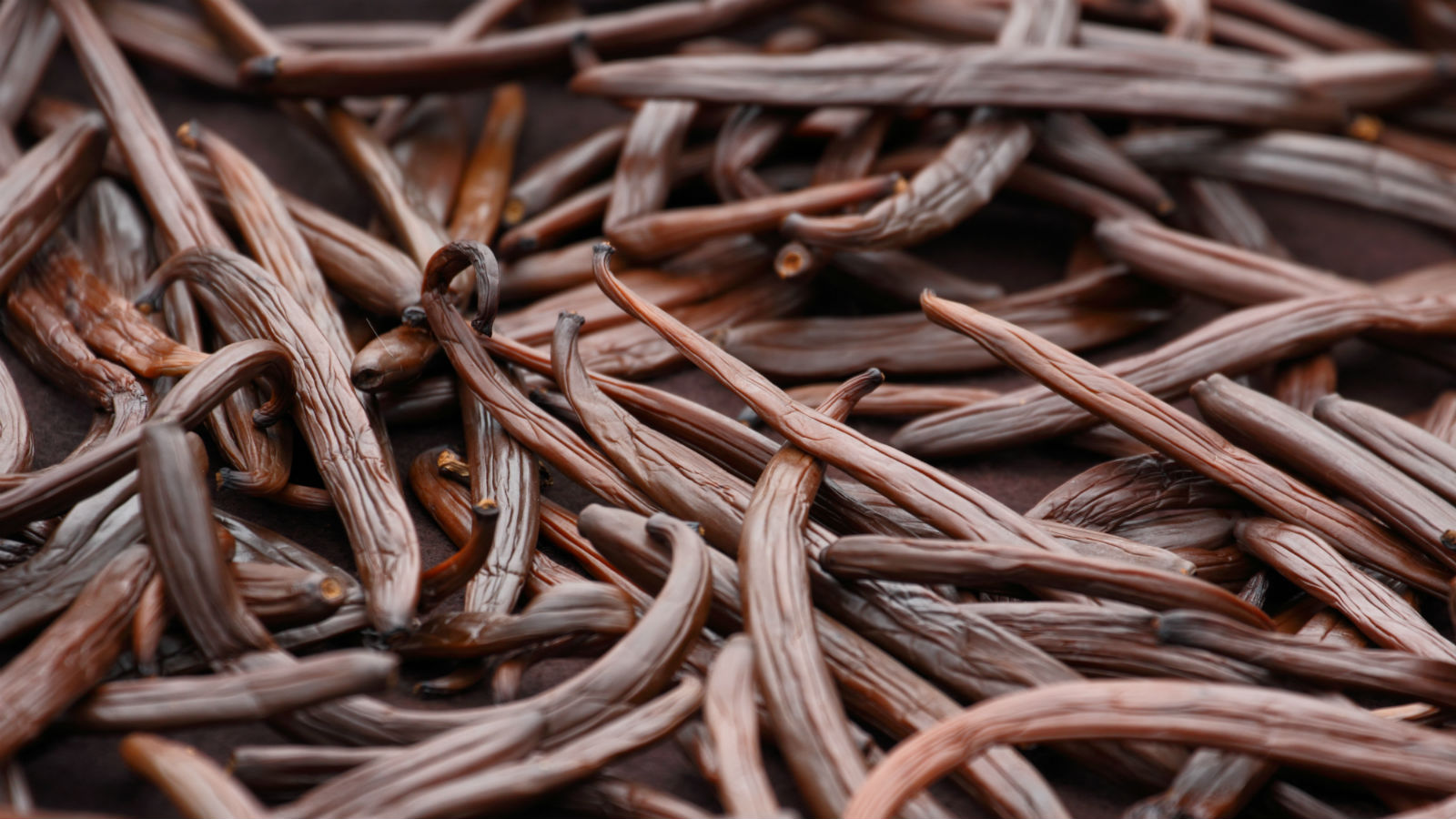 3e715a3bd0f5b8 The Secret Jewish History of Vanilla