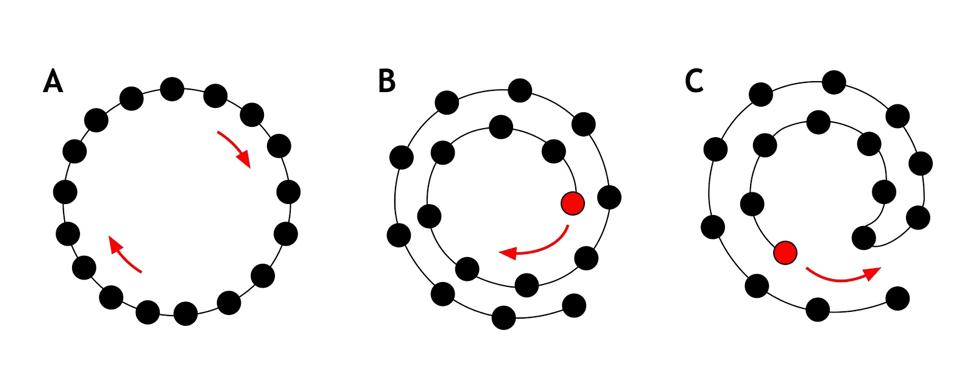 Diagram of hora configurations.